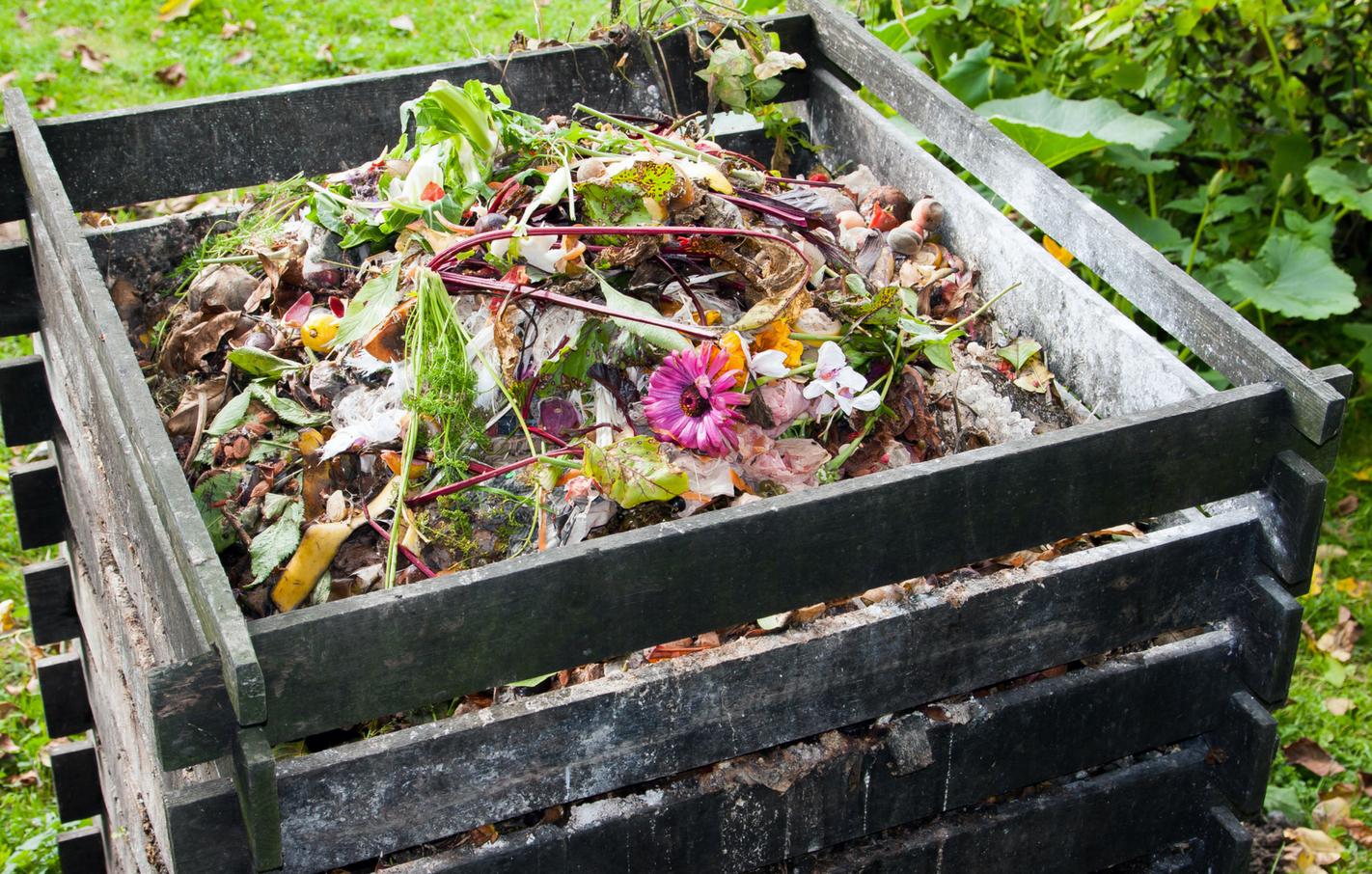 freeOrganic_Gardeningwallpaper_16